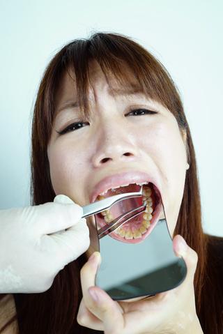 歯 観察 音葉和音